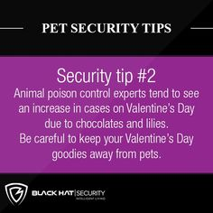 Pet Security Tips . Animal poison control experts tend to see an increase in cases on Valentine's Day due to chocolates and lilies. Be careful to keep your Valentine's Day goodies away from pets. Security Tips, Safety And Security, Home Security Systems, Can Your Pet, Things To Think About, How To Plan, Instagram Posts, Lilies, Chocolates