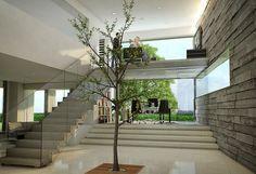 Muro de hormigon a la vista: Protagonista. Integracion de la vegetacion en el interior de la vivienda.