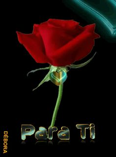 Beautiful Love Pictures, Beautiful Red Roses, Gif Collection, Happy Wishes, Romantic Images, Rose Images, Good Morning Love, Romance And Love, Spanish Greetings