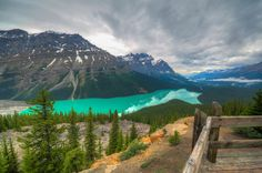 While visiting Banff National Park in Canada, one of the absolute must see Lakes is Peyto Lake. Peyto's expansive size, turquoise color and perfectly tree-lined coast make it one of the most beautiful lakes!