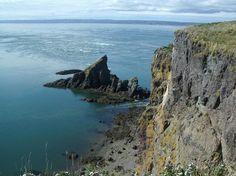 THE 10 BEST Nova Scotia Kayaking & Canoeing Activities (with Photos) - Tripadvisor Annapolis Valley, Atlantic Canada, Memorial Park, Prince Edward Island, New Brunswick, Best Location, Newfoundland, Canada Travel, Nova Scotia