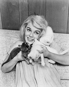 Ann-Margret with kittens. 1960s    (Source: yourcatwasdelicious, via oldtimeycats)