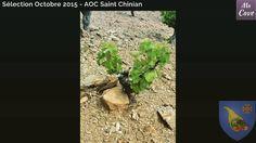 Sélection Découverte Ma Cave Octobre 2015: les sols de Saint Chinian - les schistes #macav… http://ift.tt/1JRYYcz