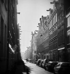 ... by Dragan Djuric