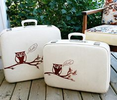 luggage, owl, owls, suitcase, suitcases, travel - inspiring picture on Favim.com