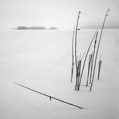 Salajärvi, 2016
