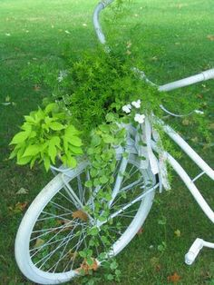 Wayside Treasures: Vintage Bicycle Basket w/ flowers. This is an unique way to display flowers. I love this idea.