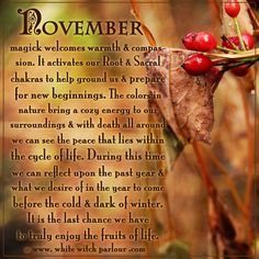 november, magick, spiritual, meaning, correspondence, witch, book of shadows, cycle of life, death, new beginnings, autumn, seasons, wisdom, psychic, mystic, spells   facebook.com/thewhitewitchparlour