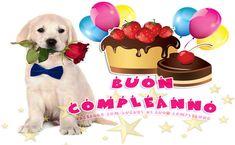 Immagini di Buon Compleanno: auguri divertenti per WhatsApp con torte e frasi per amici e amore Dog Food Recipes, Pets, Lol, Labrador, Facebook, Google, Pet Food, Dog Recipes, Labradors