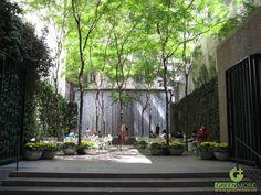 Thiết kế sân vườn độc đáohttp://greenmore.vn/dich-vu/thiet-ke-canh-quan-san-vuon/
