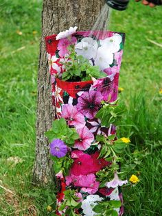 How to Plant a Beautiful Hanging Flower Bag: Watering Your Flower Bag
