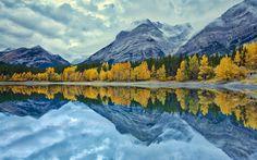 Download wallpapers mountains, autumn, mountain lake, forest, yellow trees, fog, rainy weather, USA