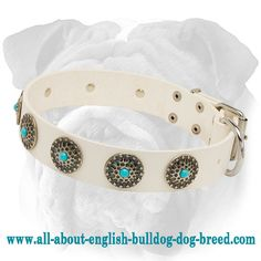 Riveted #Leather #Dog #Collar Decorated with Blue Stones $54.90 | www.all-about-english-bulldog-dog-breed.com