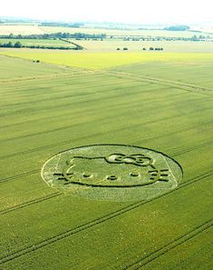 """circle"" in a field in Wiltshire, which appeared in 2004. hello kitty"