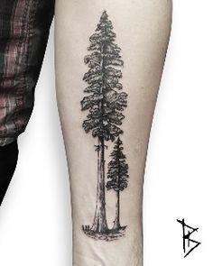 Trendy Evergreen Tree Tattoo Back Ink Ideas Tree Tattoo Arm, Pine Tree Tattoo, Trendy Tattoos, Small Tattoos, Leg Tattoos, Sleeve Tattoos, Giving Tree Tattoos, Redwood Tattoo, Evergreen Tree Tattoo