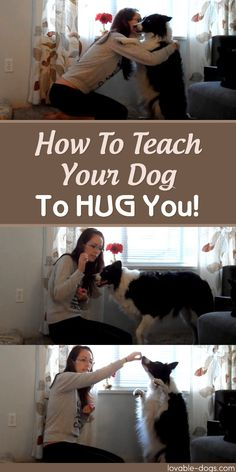 How To Teach Your Dog To HUG You! ►► http://lovable-dogs.com/how-to-teach-your-dog-to-hug-you/?i=p