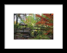 gazebo, fall, autumn, foliage, nature, landscape, toledo, ohio, botanical, garden