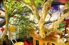 Tree and Bamboo in bar
