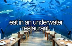 Underwater restaurant, or restaurant with huge aquarium