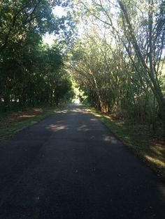 Love Trail Running