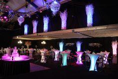 Aankleding feestzaal op locatie. www.decoratiestyling.nl