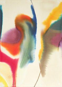 Birds of Ohio: color explosion