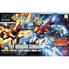 195958 Gundam Build Fighters Try HG