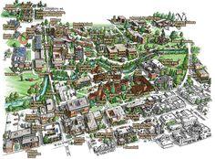160 Best Maps images