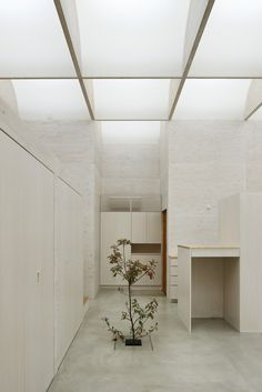 daylight house | takeshi | yokohama, japan