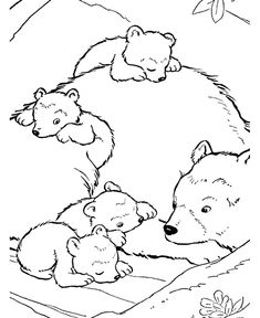 Farm Animals Pictures to Color 030 - Farm animals to color - Polar Bear Coloring Page, Farm Animal Coloring Pages, Coloring Pages For Boys, Free Printable Coloring Pages, Colouring Pages, Coloring Books, Coloring Sheets, Free Coloring, Adult Coloring