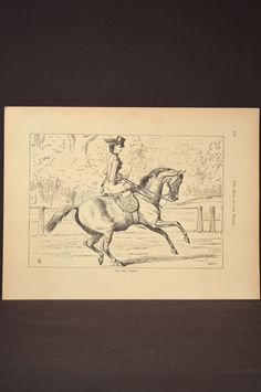 Show Horse Wall Art Horse Wall Decor Book Page Plate