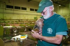 Pebb's World - THE LARGEST PUPPYMILL BUST IN CANADIAN HISTORY - MORE THAN 500 DOGS RESCUED!