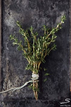 #Thyme sprigs. Explore our tasty spring recipes in sisterMAG n°7. Photo: Claudia Gödke