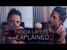 layers of fascia Yoga Anatomy, Online Yoga, Spiritual Health, Mind Body Soul, Yoga Lifestyle, Injury Prevention, Yoga Flow, Yoga For Beginners, Massage Therapy