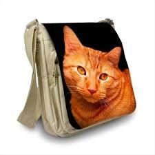 """Résultat de recherche d'images pour """"sac banane chat"""""""