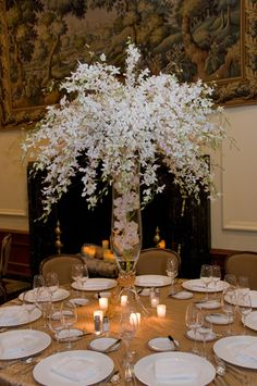 White wedding floral centerpiece - orchids | Into the Woods