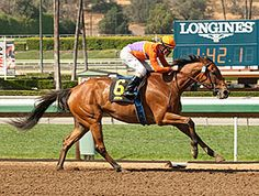 Beholder tracked early leader Uzziel through most of the 1 1/16-mile test, then surged through the final turn and pulled away effortlessly under no urging from jockey Gary Stevens to win by 3 3/4 lengths.