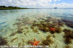 Isla Colon, Panama - next stop!