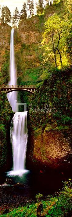 Footbridge in front of a waterfall, Multnomah Falls, Columbia River Gorge, Multnomah County, Oregon by Panoramic Images