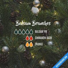 Blend Recipe: 5 drops Balsam Fir, 2 drops Cinnamon Bark, 2 drops Orange