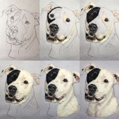 Progression of the piece I posted yesterday. I love how he seems to pop off the background. ✨#petportrait #woolpainting #needlefelting