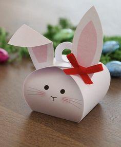 Cute | http://cute-pet.lemoncoin.org