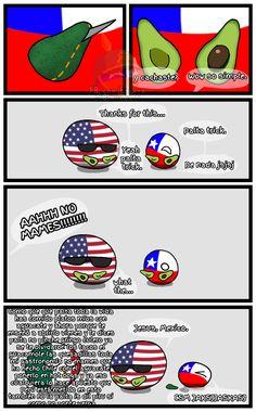 Qué mejor manera de volver del hiatus que con un recordatorio de que la wea se llama palta jaksjaksjajs ーAquilesVaesa Hetalia, Funny Tweets, Funny Memes, Human Flag, Humor Mexicano, All The Things Meme, Country Art, Fun Comics, Dear God