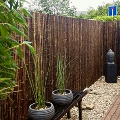 Discover the best black bamboo fencing rolls. Buy your Black Bamboo Fence Roll 250 x 200 cm at Bamboo Import Europe. Bamboo Garden Fences, Wooden Garden, Bamboo Fencing Ideas, Bamboo Garden Ideas, Bamboo Ideas, Backyard Privacy, Backyard Fences, Garden Privacy, Bamboo Privacy Fence