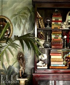 Tropical bookcase- like the way the books are stacked in a row and flanked by accessories. West Indies Decor, West Indies Style, British West Indies, Estilo Tropical, Tropical Style, Tropical Interior, Tropical Decor, Tropical Pool, British Colonial Decor