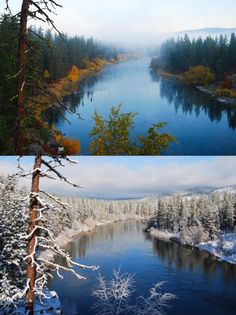 I was born in Spokane, WA, natural wonderland, and cultural wasteland. Spokane Washington, Western Washington, Washington State, Beautiful World, Beautiful Places, Spokane River, Forever Green, Outside Activities, Evergreen State