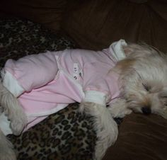 Here's Little Princess sleeeping in her Pink Cover Me by Tui! So sweet! www.tulanescloset.com & like us on Facebook.com/tulanescloset