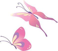 Butterfly Vector 31 Download Free Animal Vectors