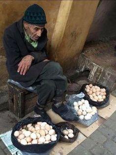 """A hölgy ezt kérdezte az öregembertől. """"Mennyiért adja a tojásokat"""