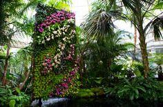 vertical gardens at the New York Botanical Garden orchid show